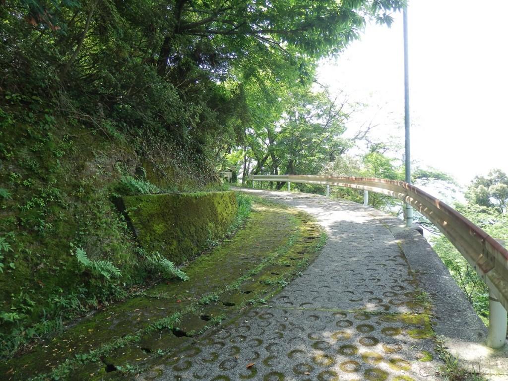 愛宕山第4の近道 1