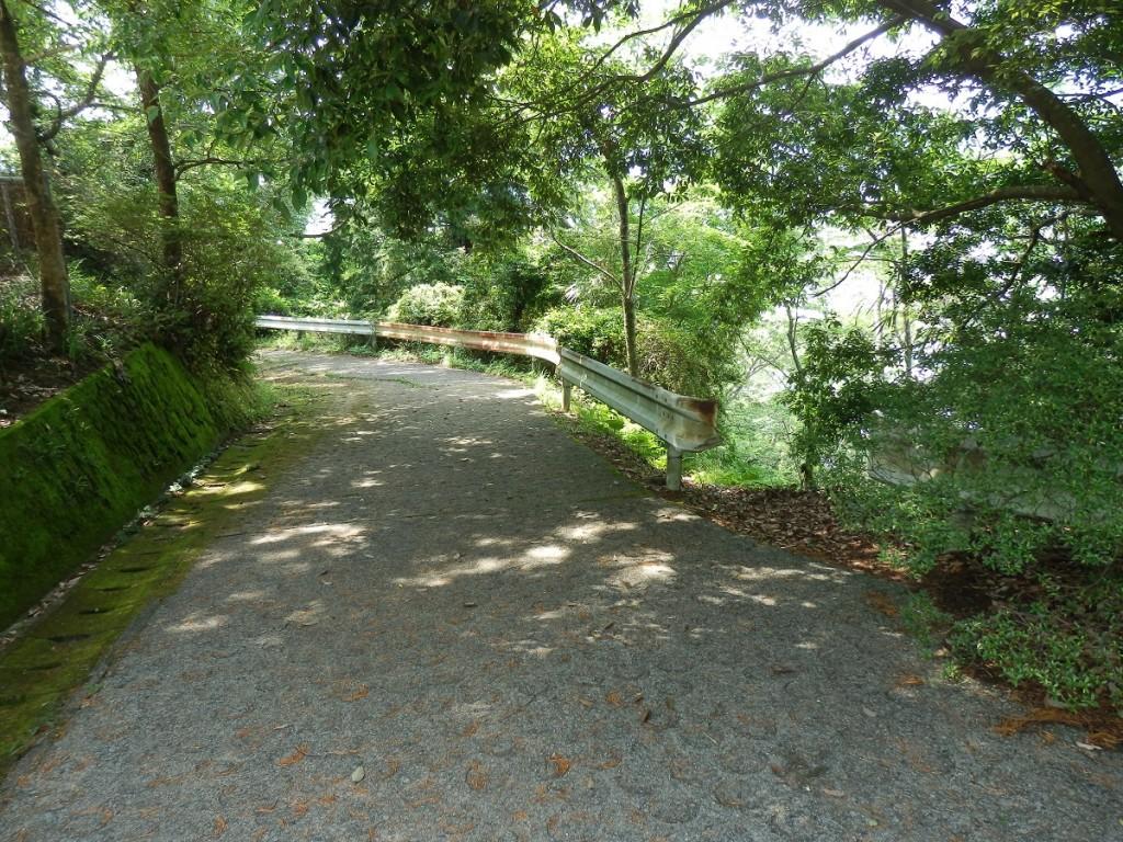 愛宕山第4の近道 5